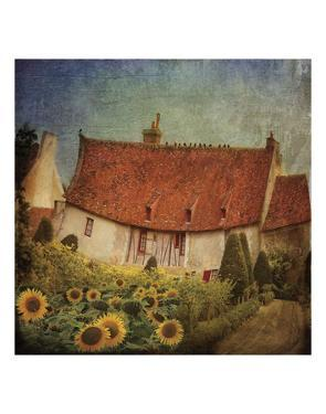 Garden Cottage at Château de Chenonceau, France by Dawne Polis