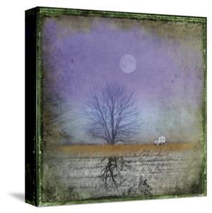 Moonlight in Vermont by Dawne Polis