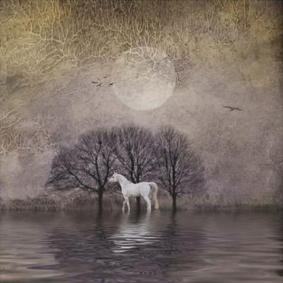 White Horse in Pond