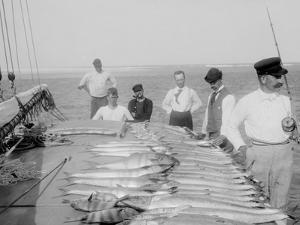 Days Fishing, Palm Beach, Fla.
