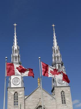 Cathedral and Basilica of Notre Dame, Ottawa, Ontario Province, Canada by De Mann Jean-Pierre