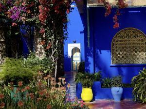 Majorelle Garden, Restored by the Couturier Yves Saint-Laurent, Marrakesh, Morocco by De Mann Jean-Pierre