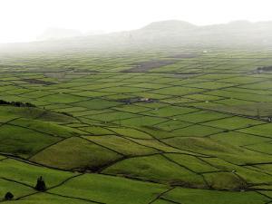 Siera Do Cume, Terceira Island, Azores, Portugal, Europe by De Mann Jean-Pierre
