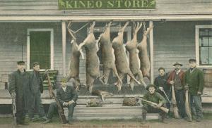 Dead Deer Hanging at Kineo Store