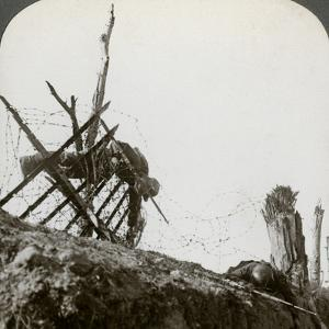 Dead German Soldiers on the Wire after a Night Raid, Givenchy, France, World War I, 1914-1918