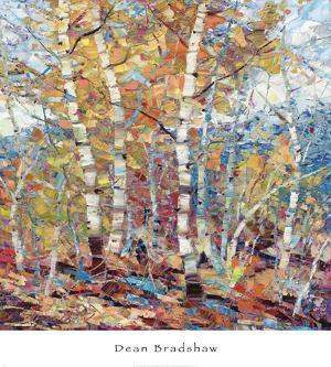 Birch Colors 1 by Dean Bradshaw