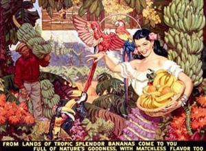 Bananas, From Lands of Tropical Splendor by Dean Cornwell