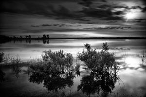 Calm Lake at Sunrise by Dean Fikar