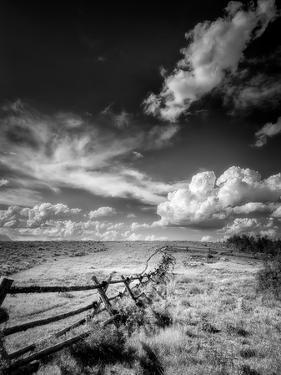 Fence on Gros Ventre Road in Wyoming by Dean Fikar