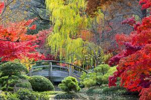 Moon Bridge in the Japanese Gardens by Dean Fikar