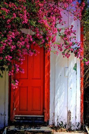 Red Door by Dean Mayo