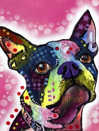 Boston Terrier by Dean Russo
