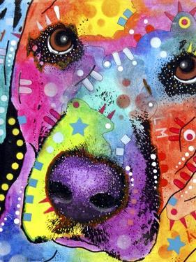 Closeup Labrador by Dean Russo
