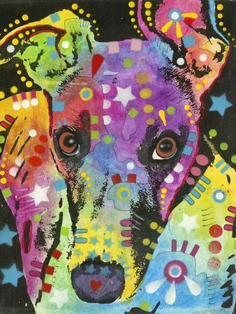 Curious Greyhound