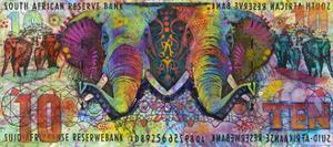 Elephants by Dean Russo