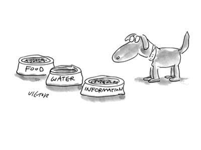 A dog is given three bowls:  'Food,' 'Water,' and 'Information.' - New Yorker Cartoon