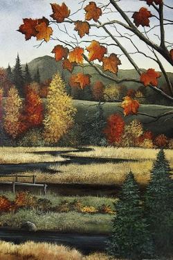 Autumn Marsh by Debbi Wetzel