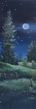 Fireflies by Debbi Wetzel