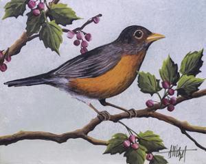 Robin by Debbi Wetzel
