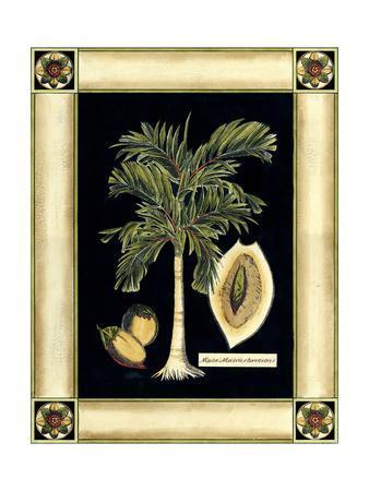 Paradise Palm V
