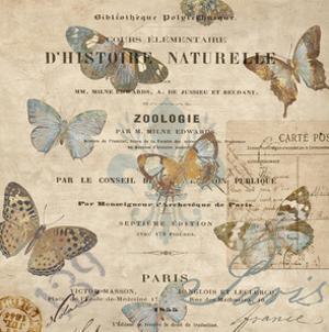 Papillon II by Deborah Devellier