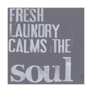 Fresh Laundry II by Deborah Velasquez