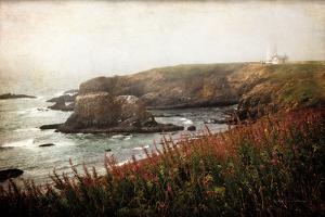 Coastal Mist by Debra Van Swearingen