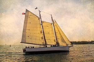 Morning Sail by Debra Van Swearingen