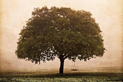 The Hopeful Oak by Debra Van Swearingen