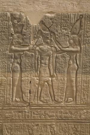 https://imgc.allpostersimages.com/img/posters/decorative-wall-reliefs-temple-of-isis-island-of-philae-aswan-egypt-north-africa-africa_u-L-PWFRRO0.jpg?p=0