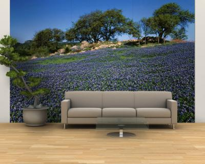 Affordable Pastures Wall Murals Posters for sale at AllPosterscom