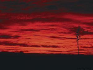 White Sands, New Mexico, USA by Dee Ann Pederson