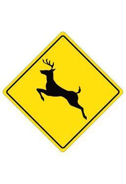 Deer Crossing Sign Poster