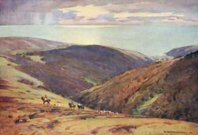 Deer Hunt on Exmoor