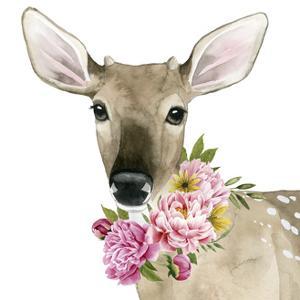 Deer Spring II