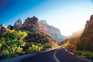 A Stunning View of Zion Canyon by dellm60