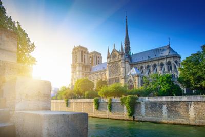 Notre Dame at Sunset - Paris by dellm60