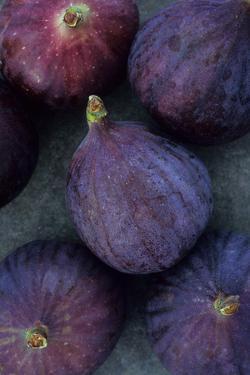 Purple Figs by Den Reader