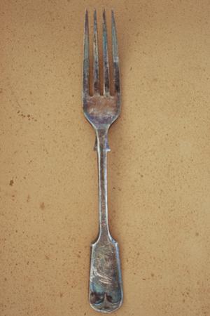 Tarnished Silver Fork by Den Reader