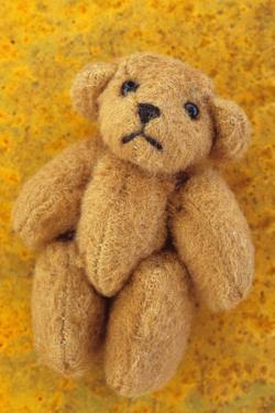 Teddy by Den Reader