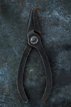 Vintage Small Pliers by Den Reader
