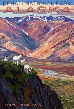 Denali National Park, Alaska - Polychrome Pass