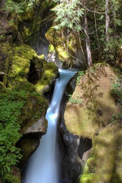 Ladder Creek Falls by dendron