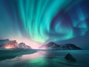 Aurora Borealis over the Sea, Snowy Mountains and City Lights at Night. Northern Lights in Lofoten by Denis Belitsky
