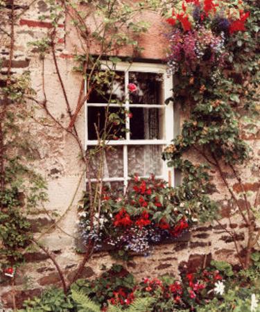 Loch Lomond Window by Dennis Barloga