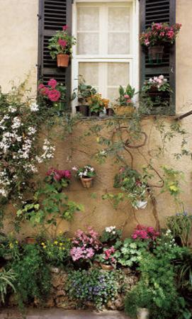 Valbonne Window by Dennis Barloga