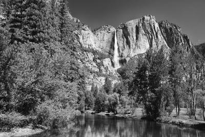 California, Yosemite NP. Yosemite Falls Reflects in the Merced River