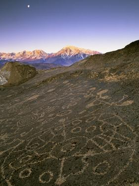 Circular Petroglyphs at the Edge of the Great Basin, Sierra Nevada Range in the Distance, Las Vegas by Dennis Flaherty