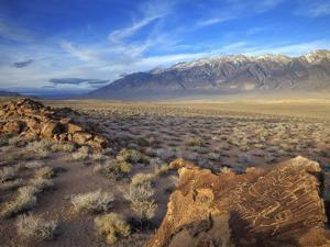 Great Basin Curvilinear Abstract-Style Petroglyphs, Bishop, California, Usa by Dennis Flaherty
