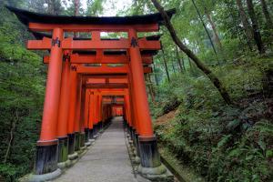 Japan, Kyoto. Torii Gates in the Fushimi-Inari-Taisha Shinto Shrine. by Dennis Flaherty